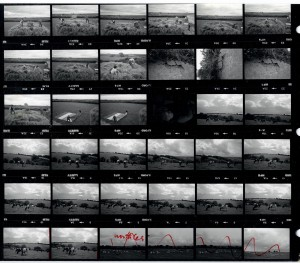 Contact Sheet 1563 by James Ravilious