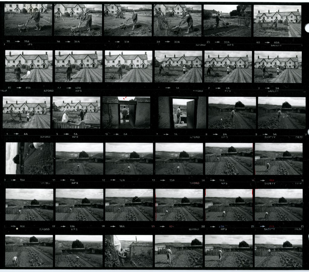 Contact Sheet 1643 by James Ravilious