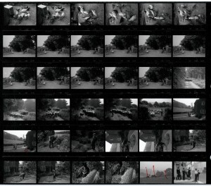 Contact Sheet 1657 by James Ravilious