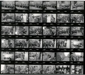 Contact Sheet 1850 by James Ravilious