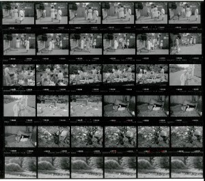 Contact Sheet 1923 by James Ravilious