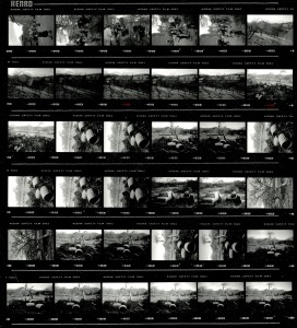 Contact Sheet 2184 by James Ravilious