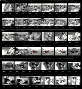 Contact Sheet 2219 by James Ravilious