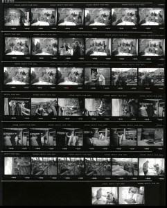 Contact Sheet 2287 by James Ravilious