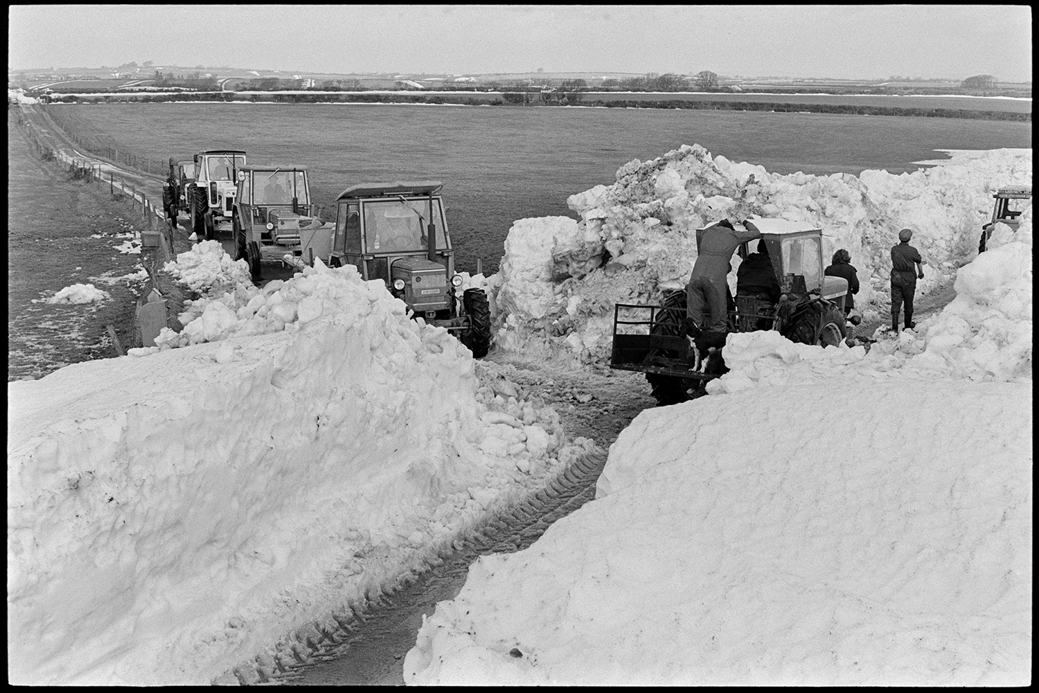 Snow. Tractors carrying milk break through from Roborough to load tanker at Beacon.<br /> [Tractors lining up in a lane waiting to travel along a road recently cleared from snow on Roborough Common, to get their milk to a milk tanker.]